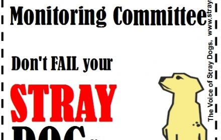 Demand a better ABC Monitoring Committee